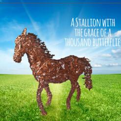 Flying Butterfly Stallion